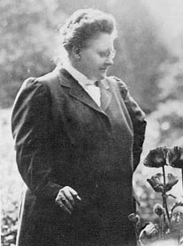 a literary analysis of poetry by amy lowell Amy lowell was born into an affluent massachusetts family and educated at  home  promoted the work of other poets she admired and wrote literary criticism ,.